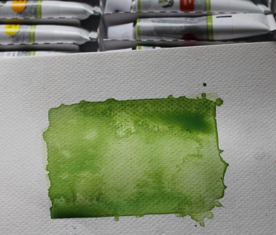 grzyb przez rozcieńczoną farbe